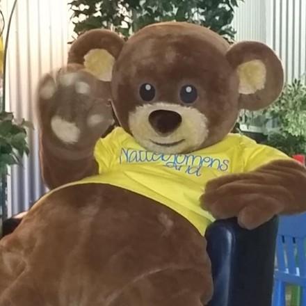 Nallebjörnens