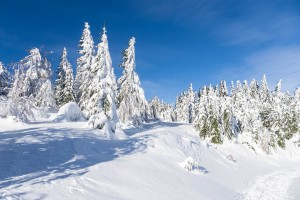 winter-1823228_960_720