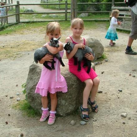 Barnens djurpark